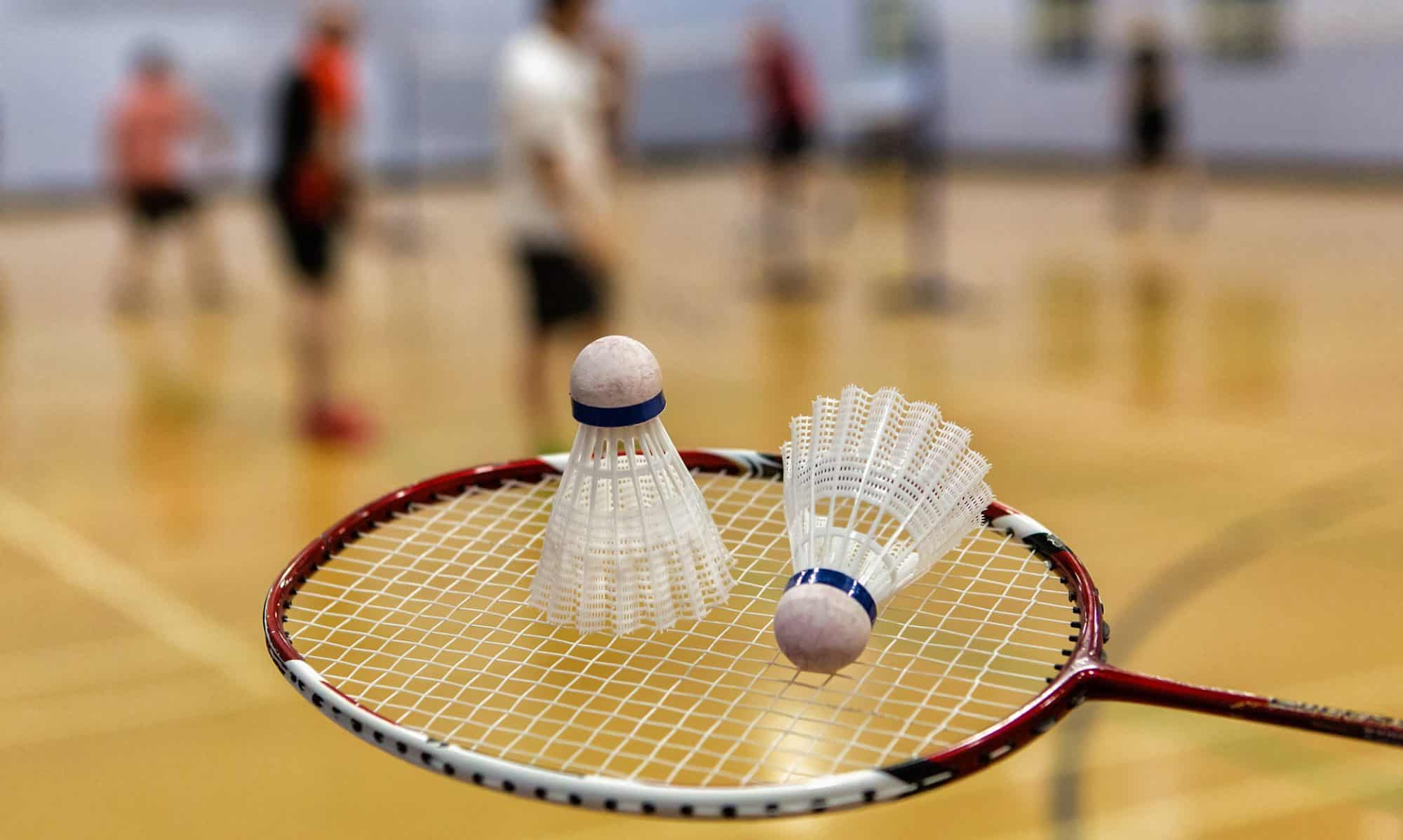 Ripley LC Badminton Club
